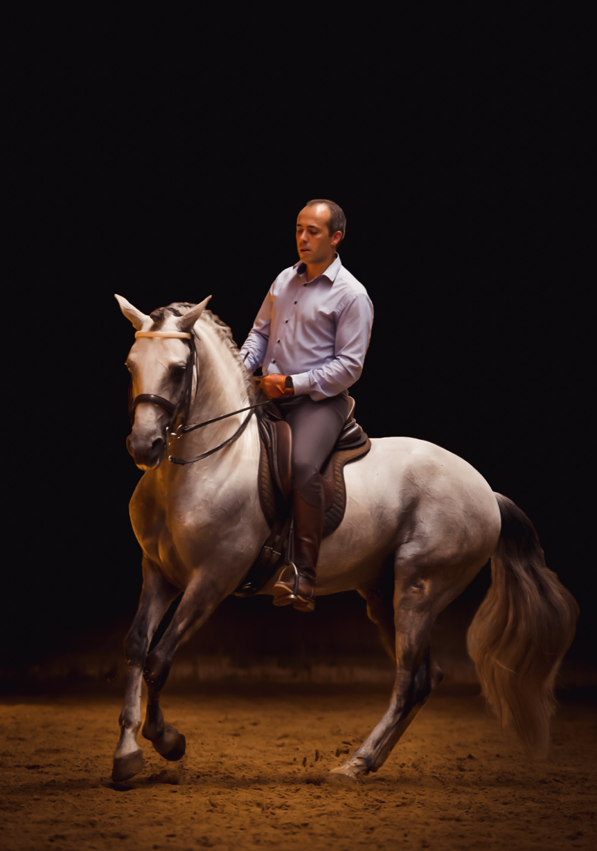 The Power Of Aesthetics Equilife World
